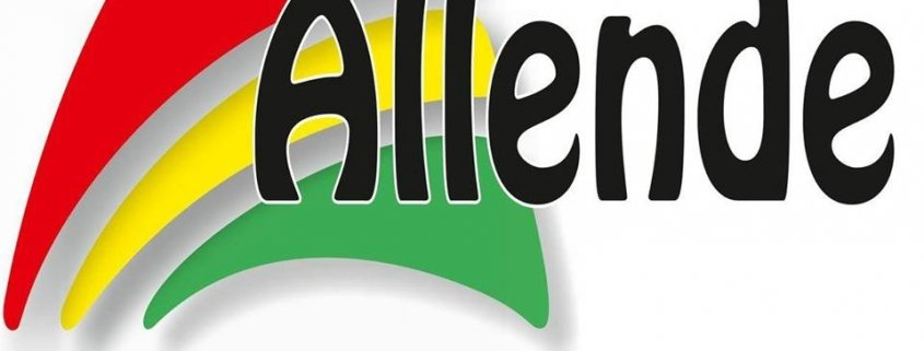 Logo Autoescuela Allende