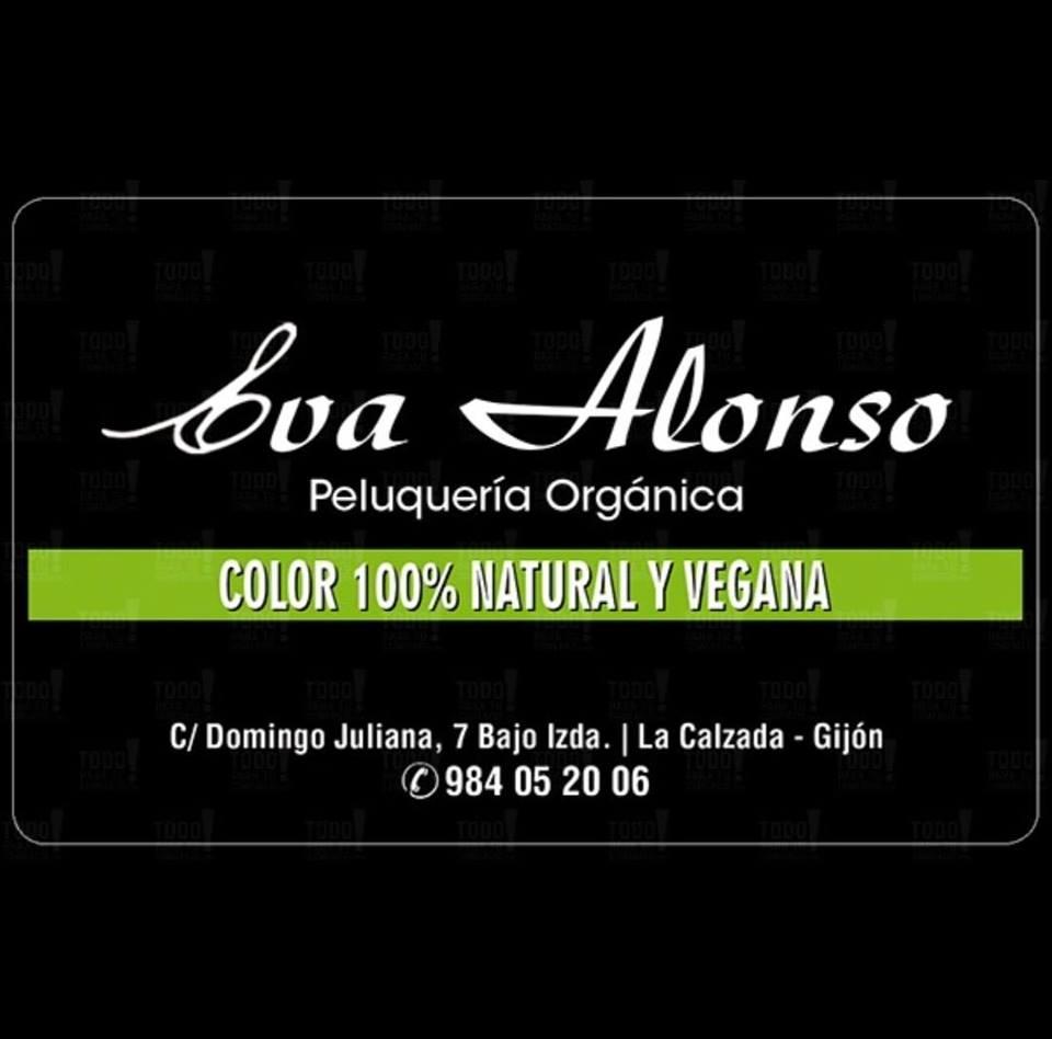 Logo Peluquería Eva Alonso