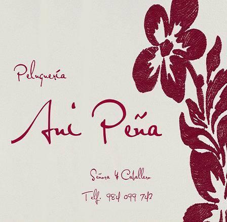 Logo Peluqueria Ani Peña